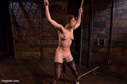 Photo number 2 from Seda shot for Hogtied on Kink.com. Featuring Seda in hardcore BDSM & Fetish porn.