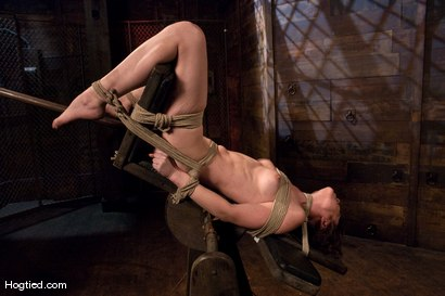 Photo number 11 from Seda shot for Hogtied on Kink.com. Featuring Seda in hardcore BDSM & Fetish porn.