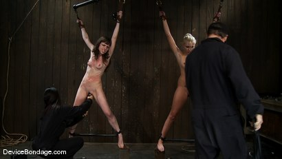 Photo number 11 from Katie Summers, Seda, and Isis Love<br> Part 1 of 4 of the January Live Show. shot for Device Bondage on Kink.com. Featuring Katie Summers, Isis Love and Seda in hardcore BDSM & Fetish porn.