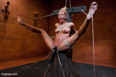 Photo number 8 from EXTREME FUCKING ORGASMS: Rain DeGrey shot for Hogtied on Kink.com. Featuring Rain DeGrey in hardcore BDSM & Fetish porn.