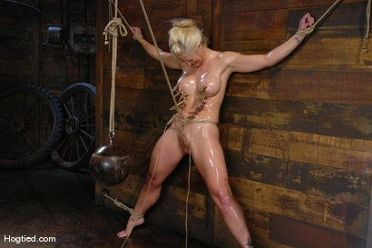 Photo number 10 from One Tough Bitch: Holly Heart and Maestro shot for Hogtied on Kink.com. Featuring Holly Heart and Maestro in hardcore BDSM & Fetish porn.