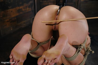 Photo number 13 from One Tough Bitch: Holly Heart and Maestro shot for Hogtied on Kink.com. Featuring Holly Heart and Maestro in hardcore BDSM & Fetish porn.