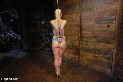 Photo number 2 from One Tough Bitch: Holly Heart and Maestro shot for Hogtied on Kink.com. Featuring Holly Heart and Maestro in hardcore BDSM & Fetish porn.