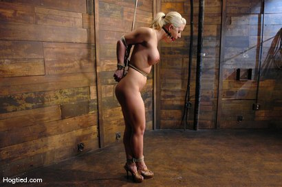Photo number 4 from One Tough Bitch: Holly Heart and Maestro shot for Hogtied on Kink.com. Featuring Holly Heart and Maestro in hardcore BDSM & Fetish porn.