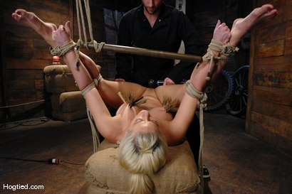 Photo number 7 from One Tough Bitch: Holly Heart and Maestro shot for Hogtied on Kink.com. Featuring Holly Heart and Maestro in hardcore BDSM & Fetish porn.