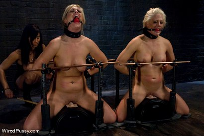 Photo number 9 from Two Sluts are Better Than one shot for Wired Pussy on Kink.com. Featuring Holly Heart, Tara Lynn Foxx and Isis Love in hardcore BDSM & Fetish porn.