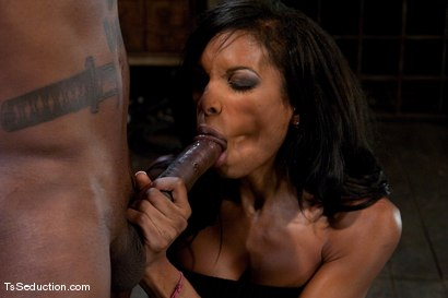 Photo number 5 from Natassia Dream, Jack Hammer  Nothing is as it seems shot for TS Seduction on Kink.com. Featuring Natassia Dreams and Jack Hammer in hardcore BDSM & Fetish porn.