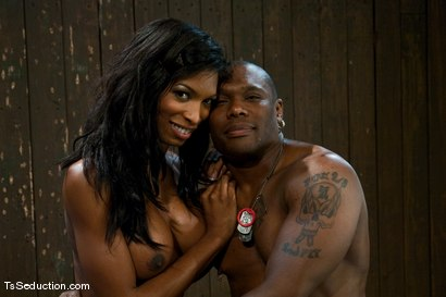 Photo number 1 from Natassia Dream, Jack Hammer <br> Nothing is as it seems shot for TS Seduction on Kink.com. Featuring Natassia Dreams and Jack Hammer in hardcore BDSM & Fetish porn.