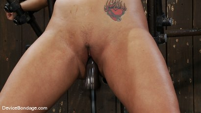 Photo number 11 from Trina Michaels   BOOMING!! shot for Device Bondage on Kink.com. Featuring Trina Michaels in hardcore BDSM & Fetish porn.