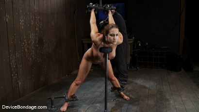 Photo number 4 from Trina Michaels<br> Batter Up! shot for Device Bondage on Kink.com. Featuring Trina Michaels in hardcore BDSM & Fetish porn.