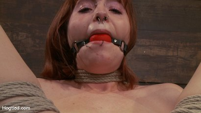 Photo number 7 from Amateur Casting Couch: Chamille shot for Hogtied on Kink.com. Featuring Chamille in hardcore BDSM & Fetish porn.
