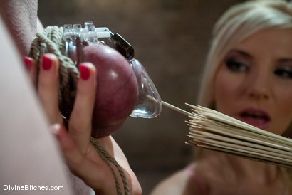 "Photo number 3 from The Training of David Chase: Episode 1 ""one week in chastity"" shot for Divine Bitches on Kink.com. Featuring David Chase and Ashley Fires in hardcore BDSM & Fetish porn."