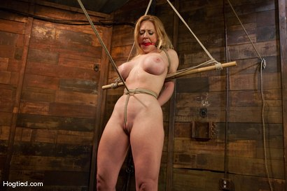Photo number 9 from Darling  shot for Hogtied on Kink.com. Featuring Dee Williams in hardcore BDSM & Fetish porn.