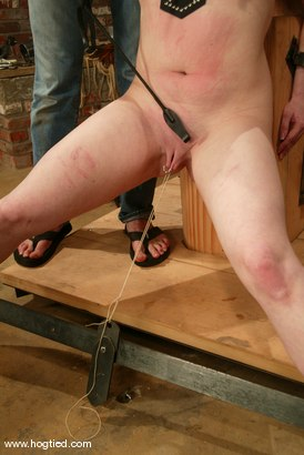 Photo number 2 from Claire Adams shot for Hogtied on Kink.com. Featuring Claire Adams in hardcore BDSM & Fetish porn.