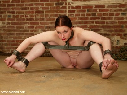 Photo number 6 from Claire Adams shot for Hogtied on Kink.com. Featuring Claire Adams in hardcore BDSM & Fetish porn.