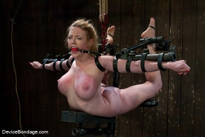 Photo number 12 from Darling   Figurehead shot for Device Bondage on Kink.com. Featuring Dee Williams in hardcore BDSM & Fetish porn.