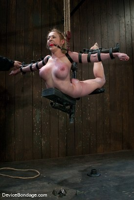 Photo number 14 from Darling   Figurehead shot for Device Bondage on Kink.com. Featuring Dee Williams in hardcore BDSM & Fetish porn.
