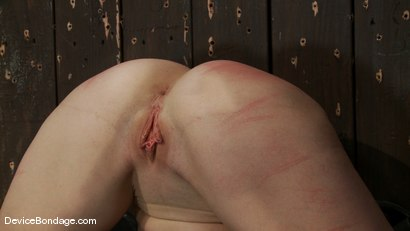 Photo number 6 from Darling <br> Contorted, and Orgasmed to Oblivion  shot for Device Bondage on Kink.com. Featuring Dee Williams in hardcore BDSM & Fetish porn.