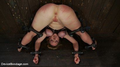 Photo number 7 from Darling <br> Contorted, and Orgasmed to Oblivion  shot for Device Bondage on Kink.com. Featuring Dee Williams in hardcore BDSM & Fetish porn.