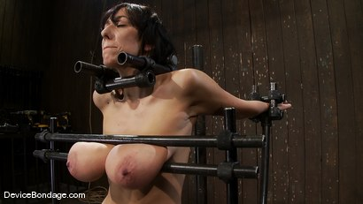 Photo number 1 from Alia Janine <br>34FF. That's all I have to say about that. shot for Device Bondage on Kink.com. Featuring Alia Janine in hardcore BDSM & Fetish porn.