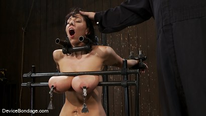 Photo number 3 from Alia Janine <br>34FF. That's all I have to say about that. shot for Device Bondage on Kink.com. Featuring Alia Janine in hardcore BDSM & Fetish porn.