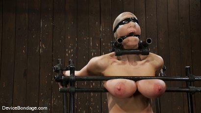Photo number 7 from Alia Janine <br>34FF. That's all I have to say about that. shot for Device Bondage on Kink.com. Featuring Alia Janine in hardcore BDSM & Fetish porn.