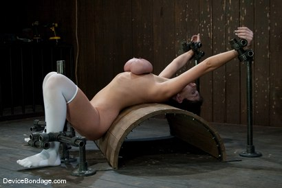 Photo number 13 from Alia Janine <br> Huge Honking Tits shot for Device Bondage on Kink.com. Featuring Alia Janine in hardcore BDSM & Fetish porn.