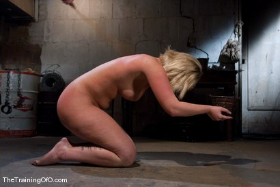 Photo number 2 from The Training of Sasha Knox Day One shot for The Training Of O on Kink.com. Featuring Sasha Knox in hardcore BDSM & Fetish porn.