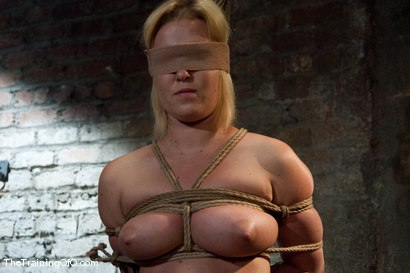 Photo number 6 from The Training of Sasha Knox, Day Two shot for thetrainingofo on Kink.com. Featuring Sasha Knox in hardcore BDSM & Fetish porn.