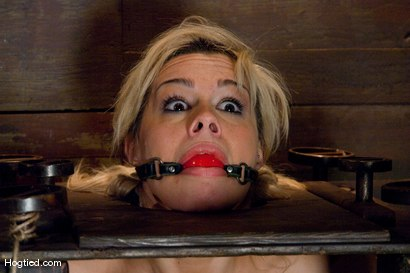Photo number 9 from Boxed up and carted around... Tara Lynn Fox shot for Hogtied on Kink.com. Featuring Tara Lynn Foxx in hardcore BDSM & Fetish porn.
