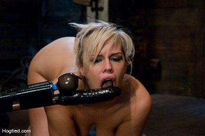 Photo number 11 from Boxed up and carted around... Tara Lynn Fox shot for Hogtied on Kink.com. Featuring Tara Lynn Foxx in hardcore BDSM & Fetish porn.