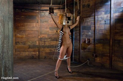 Photo number 2 from Boxed up and carted around... Tara Lynn Fox shot for Hogtied on Kink.com. Featuring Tara Lynn Foxx in hardcore BDSM & Fetish porn.