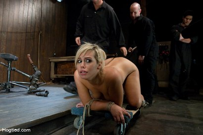Photo number 12 from Boxed up and carted around... Tara Lynn Fox shot for Hogtied on Kink.com. Featuring Tara Lynn Foxx in hardcore BDSM & Fetish porn.