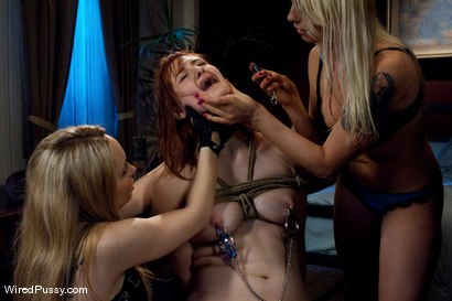 Photo number 4 from Breaking and Entering shot for Wired Pussy on Kink.com. Featuring Aiden Starr, Lorelei Lee and Violet Monroe in hardcore BDSM & Fetish porn.
