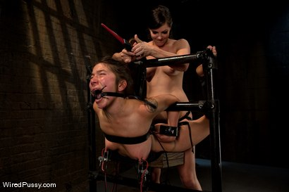 Photo number 14 from Good Puppy shot for Wired Pussy on Kink.com. Featuring Vai and Bobbi Starr in hardcore BDSM & Fetish porn.