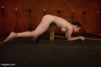 Photo number 12 from Sienna:  Looks Can Be Deceiving shot for Hogtied on Kink.com. Featuring Sienna in hardcore BDSM & Fetish porn.
