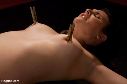 Photo number 5 from Sienna:  Looks Can Be Deceiving shot for Hogtied on Kink.com. Featuring Sienna in hardcore BDSM & Fetish porn.