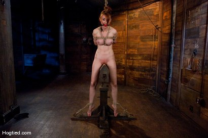 Photo number 4 from Kendra James<br>Sophistication  shot for Hogtied on Kink.com. Featuring Kendra James in hardcore BDSM & Fetish porn.
