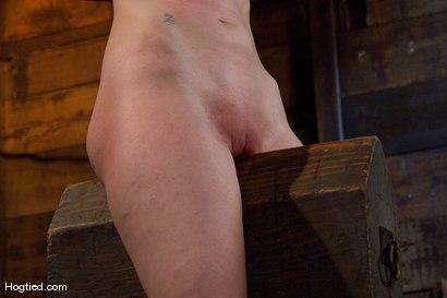 Photo number 8 from Kendra James<br>Sophistication  shot for Hogtied on Kink.com. Featuring Kendra James in hardcore BDSM & Fetish porn.