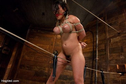 Photo number 4 from  Real Big Tits, Real Big Orgasms shot for Hogtied on Kink.com. Featuring Charley Chase in hardcore BDSM & Fetish porn.