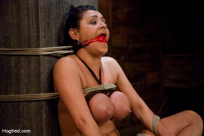 Photo number 6 from  Real Big Tits, Real Big Orgasms shot for Hogtied on Kink.com. Featuring Charley Chase in hardcore BDSM & Fetish porn.