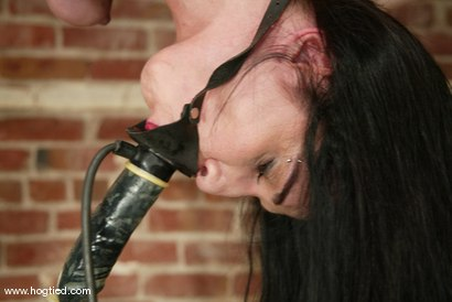 Photo number 5 from Shade Paine shot for Hogtied on Kink.com. Featuring Shade Paine in hardcore BDSM & Fetish porn.