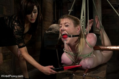 Photo number 5 from Big Tits, Tight Bondage, and Bad Ass Electrical Toys shot for Wired Pussy on Kink.com. Featuring Princess Donna Dolore and Dee Williams in hardcore BDSM & Fetish porn.