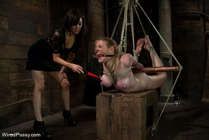 Photo number 7 from Big Tits, Tight Bondage, and Bad Ass Electrical Toys shot for Wired Pussy on Kink.com. Featuring Princess Donna Dolore and Dee Williams in hardcore BDSM & Fetish porn.
