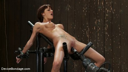 Photo number 12 from Gia DiMarco<br>The cute girl from next door. shot for Device Bondage on Kink.com. Featuring Gia DiMarco in hardcore BDSM & Fetish porn.