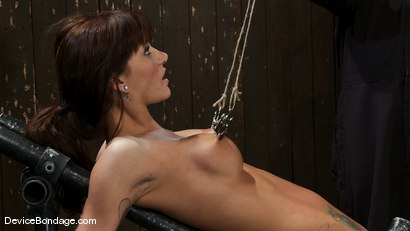 Photo number 9 from Gia DiMarco<br>The cute girl from next door. shot for Device Bondage on Kink.com. Featuring Gia DiMarco in hardcore BDSM & Fetish porn.