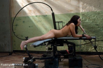 Photo number 1 from Squealing and cumming shot for Fucking Machines on Kink.com. Featuring Vicki Chase in hardcore BDSM & Fetish porn.