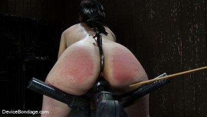 Photo number 12 from Maggie Mayhem<br>Ass hooked and cunt fucked shot for Device Bondage on Kink.com. Featuring Maggie Mayhem in hardcore BDSM & Fetish porn.
