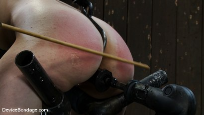 Photo number 7 from Maggie Mayhem<br>Ass hooked and cunt fucked shot for Device Bondage on Kink.com. Featuring Maggie Mayhem in hardcore BDSM & Fetish porn.