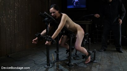 Photo number 10 from Maggie Mayhem<br>Ass hooked and cunt fucked shot for Device Bondage on Kink.com. Featuring Maggie Mayhem in hardcore BDSM & Fetish porn.
